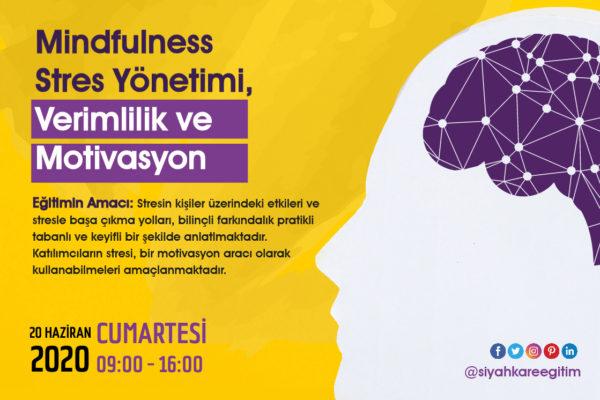 Mindfulness Stres Yönetimi – 20.06.2020
