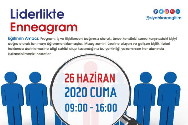 Liderlikte Enneagram – 26.06.2020